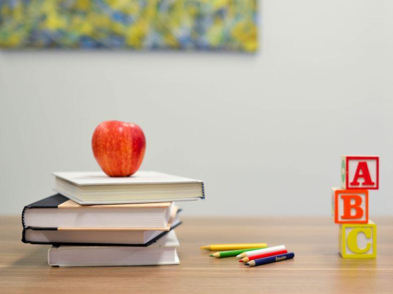 健康促進學校全球標準指標 第三版草案
